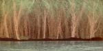 """""""GreatLakeShore"""", acrylic on canvas, 4 x 2ft."""